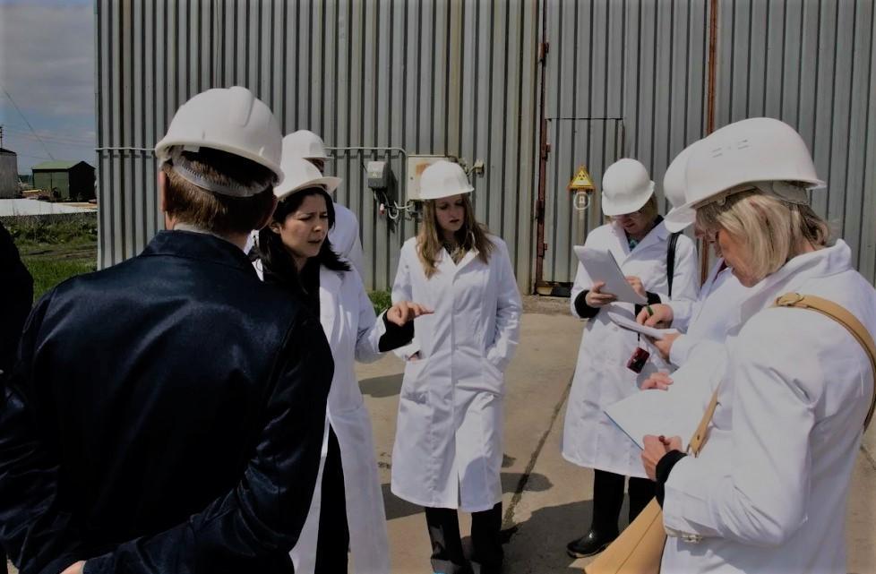 В Перми планируется проведение экологической экспертизы участка земли, который располагается за Дворцом Культуры Железнодорожников